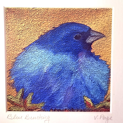 """Blue Bunting"" print"