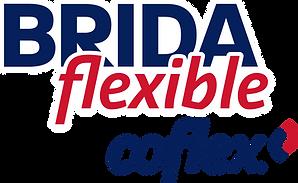 Brida Flexible_Azul.png