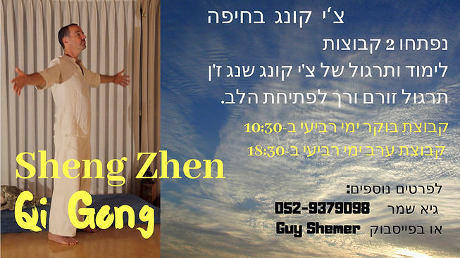 Chi Gong with Guy haifa last update.jpg
