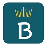 btbox.jpg