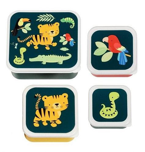 Set 4 Cajas Tigre