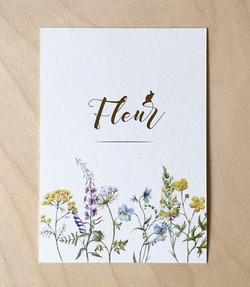 FLEUR veldbloemen