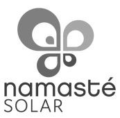 nse_logo_web.png