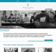 Investment Fund Website