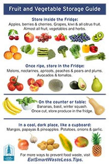 Fruit and Vegetable Storage Guide