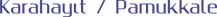 karahayıt logo.png