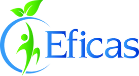logo eficas_edited.png