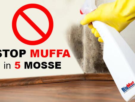 Come eliminare e prevenire la muffa in casa? 5 cose da sapere