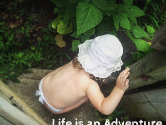Life is an Adventure, so let's have fun!