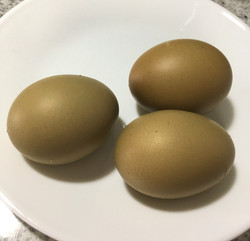 Some of our beautiful Olive Eggs