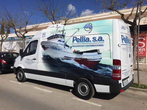 Pellia S.A.
