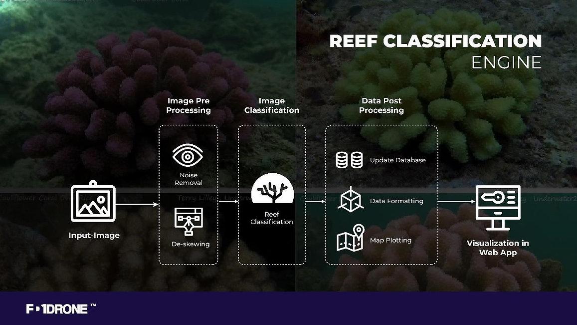 Reef_class_dia.jpg