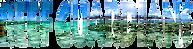 Reef_Guardians_Hawaii_logo-removebg-prev