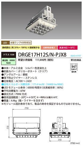 spec_DRGE17H12SNPJX8.jpg