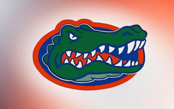 2015 Gator Soccer Preview