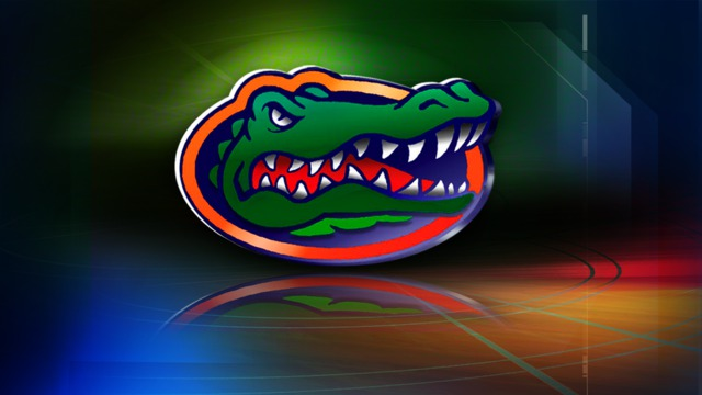 2014 Gator Volleyball Preview