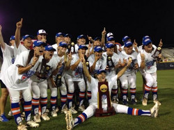 2014 Gator Softball: Recap & Stats
