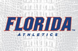 2014 UF Spring Sports Preview