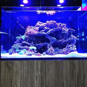 Livingston's Aqua Marin 900
