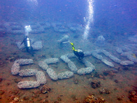 LINI - Fishkeeper Scotland Reef