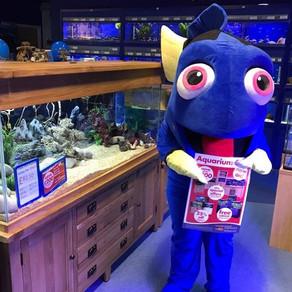 Fishkeeper Scotland's amazing tank sale is now on!