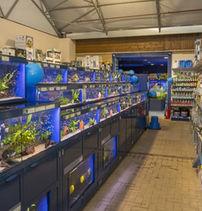 PW_Fishkeeper Perth_Opening_5.JPG