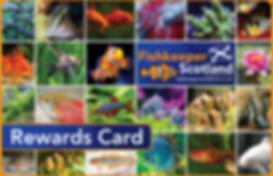 RewardsCard