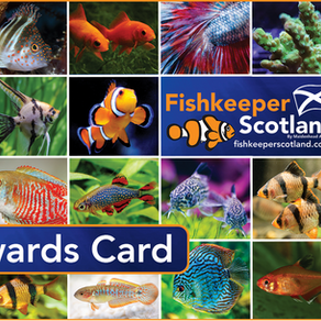 Fishkeeper Rewards August Offers