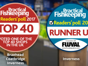 PFK Readers' Poll – Results!