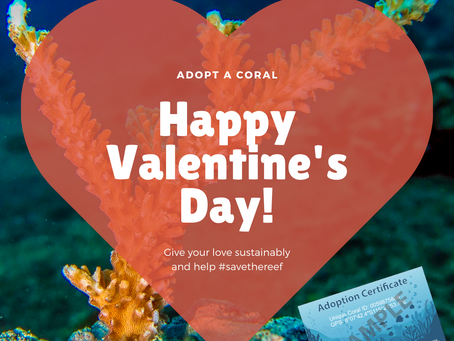 Adopt A Coral for your valentine!