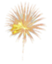 Fireworks_transparent_background_31.png