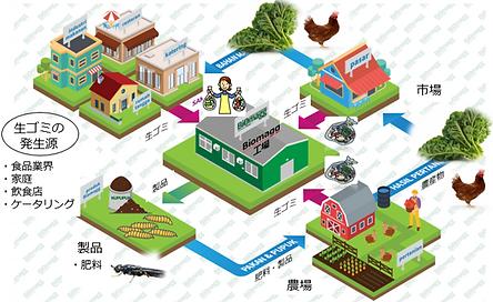 Biomagg循環図.png