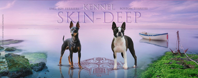 skin deeps copyrights reserved.jpg