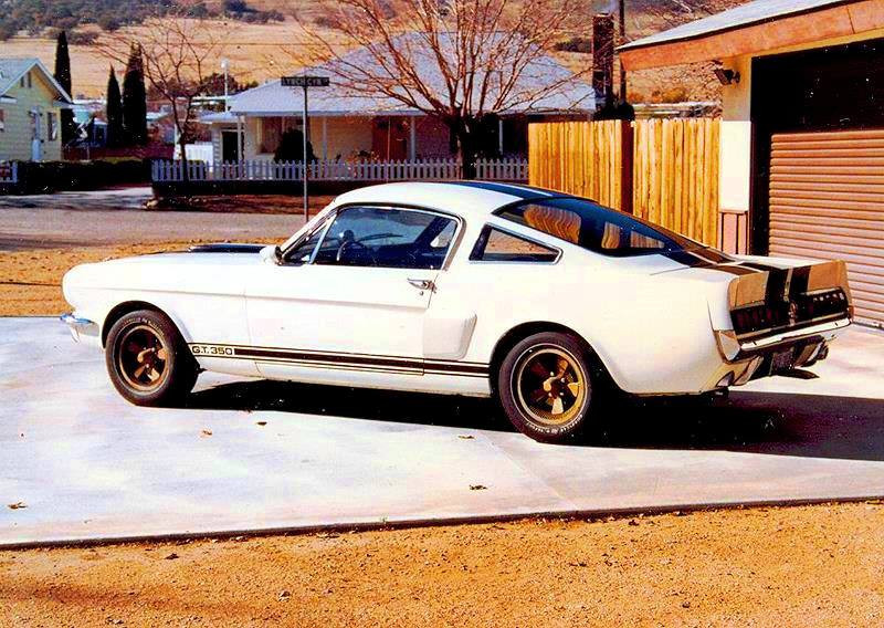 vintage photo Ford Shelby Mustang