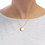 Thumbnail: Constellation Zodiac Sign Necklace - Pisces