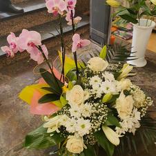 Caja orquidea y bouquet flor varoiada desde 100€