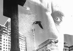 gull over railway square