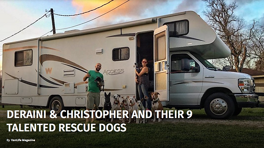 VanLife Magazine article The Canine Experience