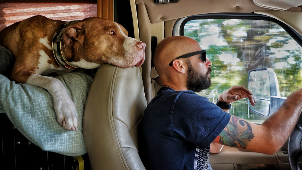 Road trip! We are going camping!