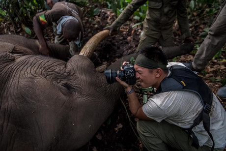 On Assignment with African Parks in the Congo