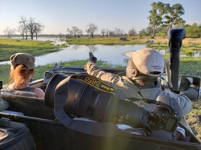 Into the delta