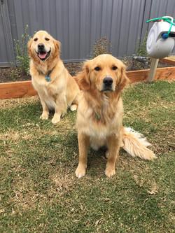 Billy & Oscar