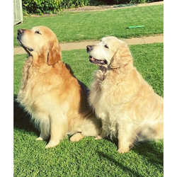 Max & Zoe