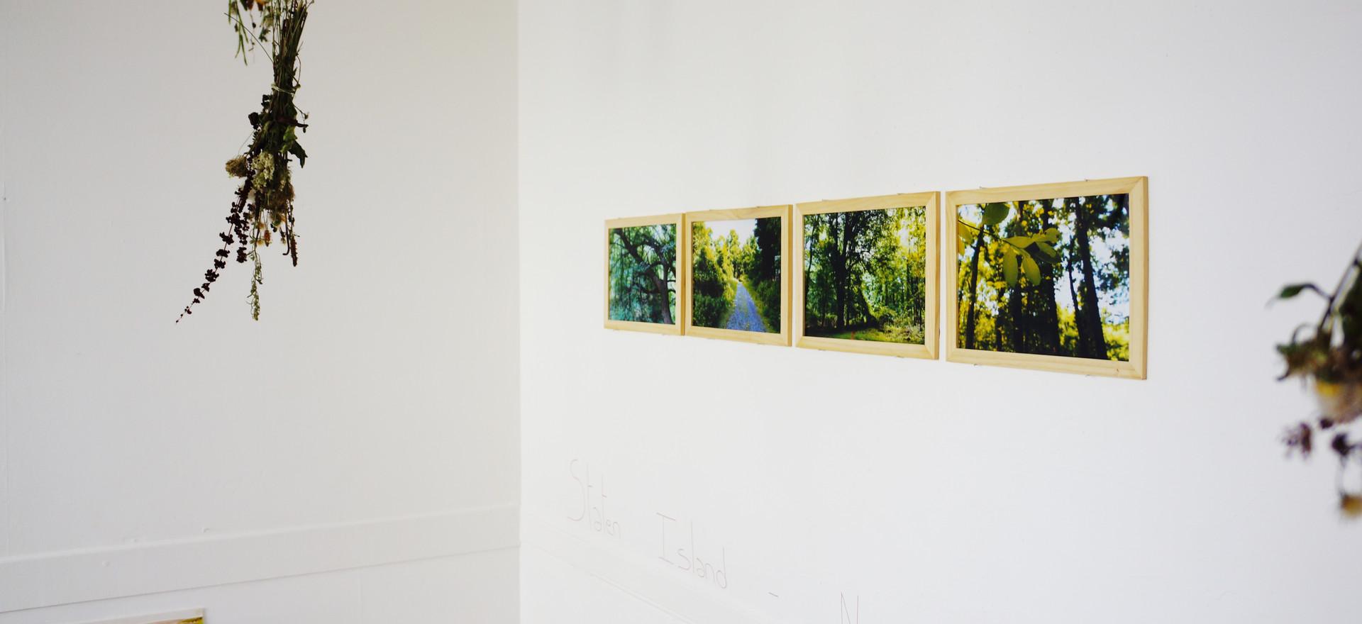 """J'ai cru respirer à Staten Island"", photographies numérique, 2018"