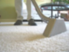 carpet cleaning business.jpg
