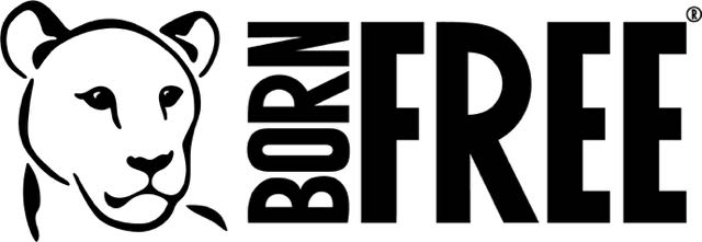 Born Free-Black-LAN