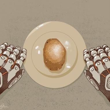 05 - Joanna Zdunik - 'Martian Potato'