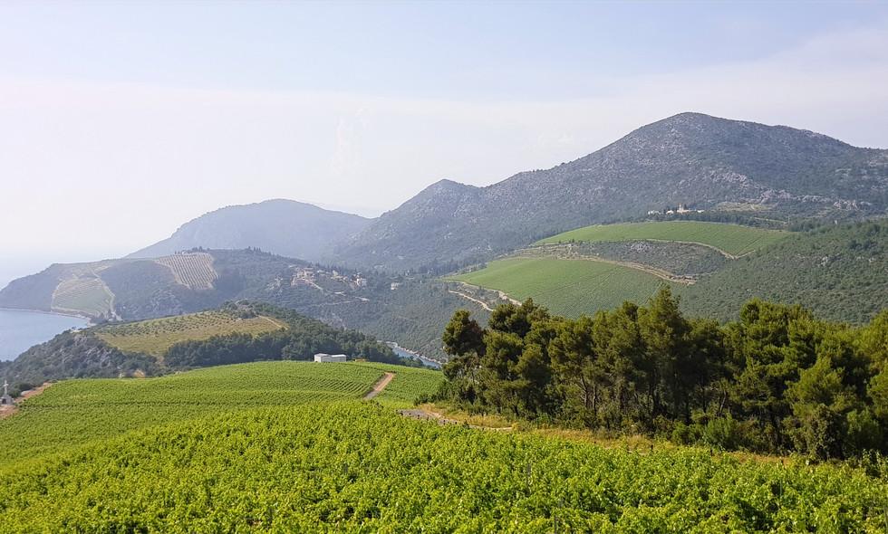Southern Dalmatia by Drago Travel.jpg