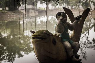 Tracvel Photography Koi Pond in Vietnam