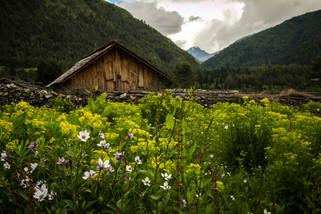 Landscape Photography quaint cabin in Dhorpatan, Nepal